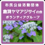 倉渕ヤマアジサイの会